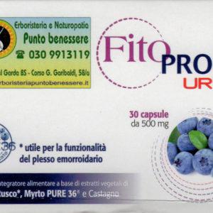 Fito PROCT URTO